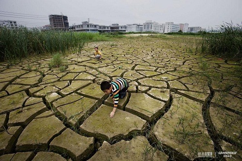 Children are playing in abandoned farmland due to pollution