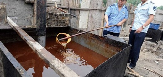 gutter-oil in China