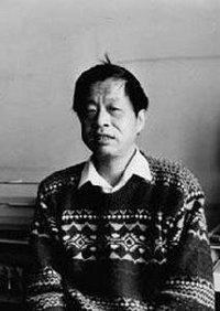 wang xiaobo essays