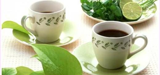 green-tea-china 1