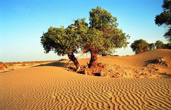 Top 8 Most Beautiful Deserts in China