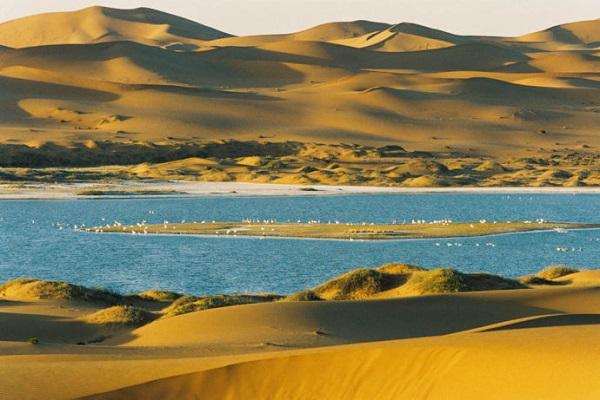 Tengger Desert