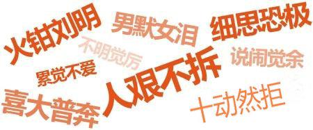 Top 10 Popular Internet Phrases in China in 2013