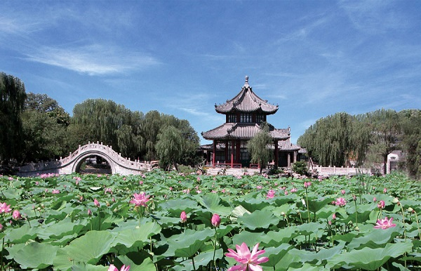 Ancient Lotus Pond Garden