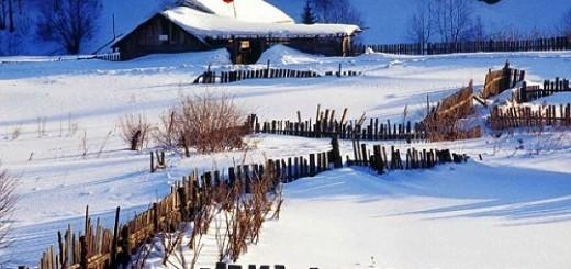 Winter Snow of  North China