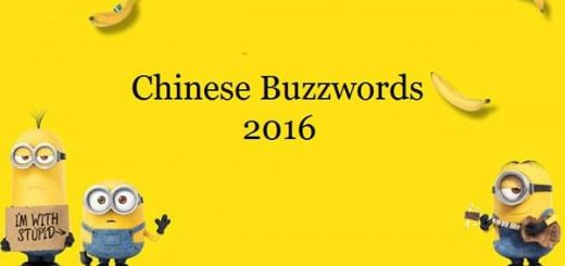 chinese-buzzwords-year-2016
