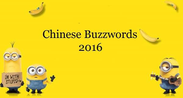 chinese buzzwords 2016